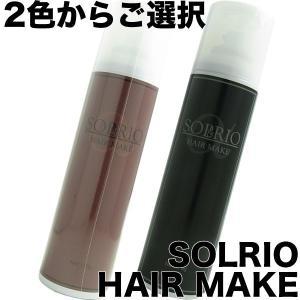 ソルリオ ヘアメイク 170g ブラック/ブラウンよりご選択 (一時染毛料) ソセイバイオ antec35