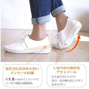 フラットシューズ  靴 レディース 歩きやすい レースアップ アンナコレクション|antelope|04