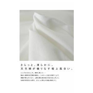 トップス プルオーバー 五分袖 七分袖 綿 綿100% 袖デザイントップス・(80)◎メール便可|antiqua|07