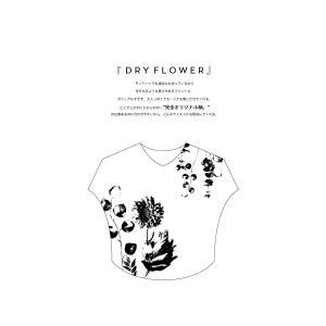 トップス レディース 半袖 カットソー 綿100 Vネック 花柄ドルマンTシャツ・6月30日0時〜再販。新色追加 50ptメール便可 antiqua 08
