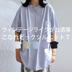 カットオフVネックT Tシャツ レディース トップス 綿・6月10日0時〜発売。メール便不可 antiqua