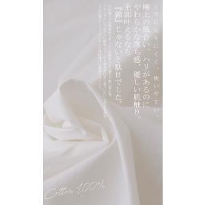 トップス シャツ 長袖 レディース 綿 綿100% 綿タックシャツ・6月13日20時〜再再販。100ptメール便可|antiqua|09