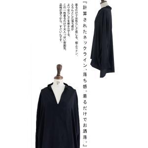 トップス シャツ 長袖 レディース Vネック スキッパー スキッパーシャツ・(50)メール便可|antiqua|08