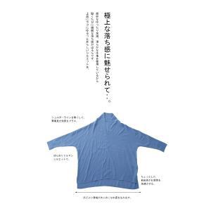 トップス シャツ 長袖 レディース Vネック スキッパー スキッパーシャツ・(50)メール便可|antiqua|09
