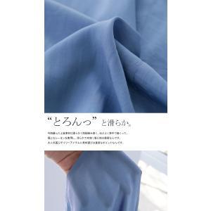 トップス シャツ 長袖 レディース Vネック スキッパー スキッパーシャツ・(50)メール便可|antiqua|10