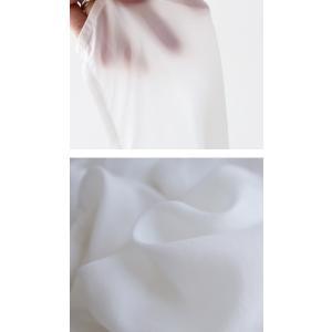 トップス シャツ 長袖 レディース シアー バンドカラー ロングプルオーバーシャツ・11月9日20時〜発売。(80)メール便可|antiqua|09