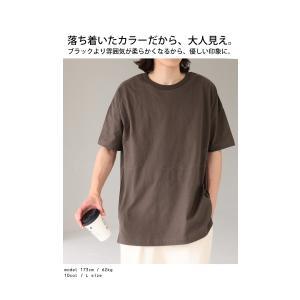 トップス Tシャツ メンズ 半袖 綿 クルーネックバスクT・100ptメール便可|antiqua|14