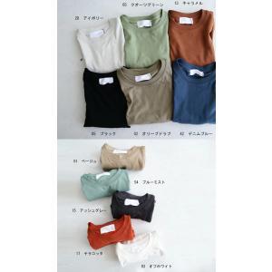 トップス Tシャツ メンズ 半袖 リブ 綿・8月5日0時〜再販。新色追加!既存色の発送は8/6〜 新色の発送は8/11〜。100ptメール便可 antiqua 03