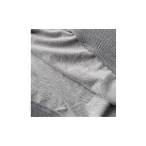 トップス プルオーバー 綿 綿100% スウェット レディース ミニ裏毛ラグラントップス・##×メール便不可!|antiqua|08