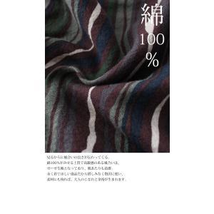 トップス メンズ シャツ 長袖 ストライプ 綿 綿100% マルチストライプシャツ・8月21日20時〜再販。「G」##メール便不可|antiqua|07