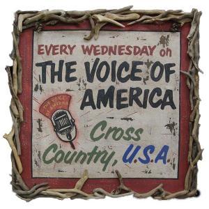 ヴィンテ ージ加工 木製看板「THE VOICE OF AMERICA」|antiquesjikoh