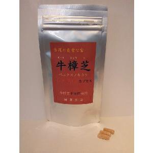 健康食品サプリメント 牛樟芝特別濃縮カプセル 90粒 ベニクスノキタケ・紅樟芝|antrodia-cinnamomea