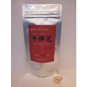健康食品サプリメント 牛樟芝カプセル 90粒 ベニクスノキタケ・紅樟芝|antrodia-cinnamomea