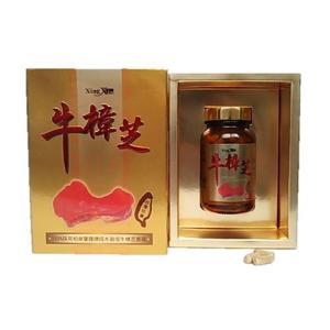 健康食品サプリメント 杏心頂級牛樟芝カプセル 60粒 ベニクスノキタケ・紅樟芝|antrodia-cinnamomea