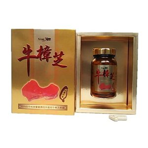 健康食品サプリメント 杏心特級牛樟芝カプセル 60粒 ベニクスノキタケ・紅樟芝|antrodia-cinnamomea
