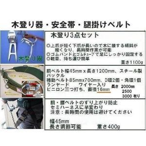 FR-100 「fujii-34」「WP-63D-120-M-L」「WP-FC-512W-LY250」 腿掛けベルト「R-600-OT2」4set anyoujiya-1