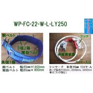 U字吊り安全帯 「WP-FC-22-W-L-LY250」胴ベルト1400mm補助800mmランヤード2500mm 藤井電工 Lサイズ |anyoujiya-1