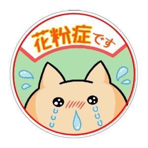 花粉症シール φ27mm×30枚セット マスク用【送料300円ゆうパケット対応可】