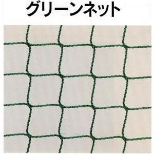 グリーンネット 30mm目 養生グリーンネット 5×10 5枚セット|anzen-signshop