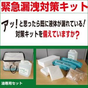 漏洩対策 漏洩フィニッシュキット(油用20リットル)×2個セット |anzenkiki