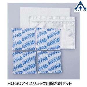熱中症対策 グッズ アイスリュック用保冷剤 HO-301