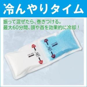 熱中症対策 グッズ 冷んやりタイム HO-795
