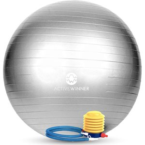 Active Winner バランスボール 65cm シルバー ポンプ付き! ヨガボール ダイエット アンチバースト仕様の商品画像|ナビ