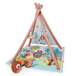 対象年齢 :0月以上 おもちゃ/赤ちゃん・幼児のおもちゃ/屋内遊具