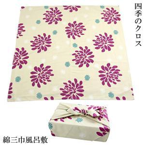 風呂敷 大判 三巾 クリーム マゼンタ 菊柄 綿100% シャンタン 106cm 日本製
