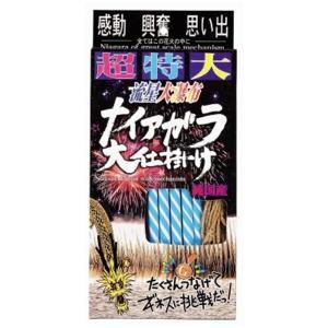 超特大ナイアガラ 5個 子供会 幼稚園 保育園 景品 お祭り 縁日 aoigangu