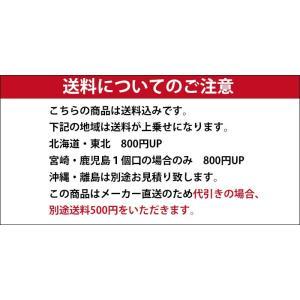 カラーコーン  赤 軽量 25本 送料無料|aok-safetyshop|02