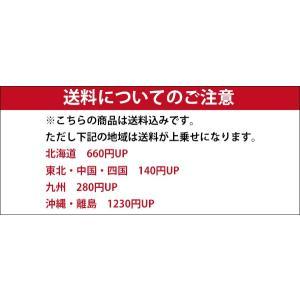 スコッチコーン 赤白 軽量 コーンベット 10個セット 送料無料|aok-safetyshop|02