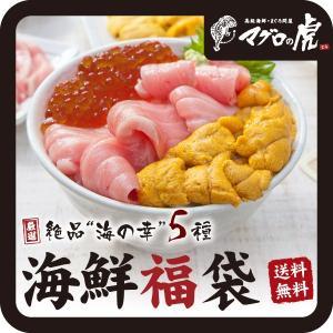 お中元 海鮮丼 本マグロ大トロ入り海鮮福袋セット 海鮮丼 う...