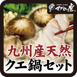 クエ鍋2〜3人前(クエ身250g、クエアラ300g、もみじおろし、ポン酢付) 海鮮詰め合わせ お取り寄せグルメ|aomonya