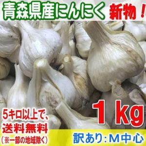 青森県産にんにく★1kg(30年産)M中心(訳あり)