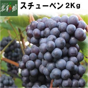 【津軽ぶどう村 スチューベン 2kg(6〜9房)】 ■発送期...