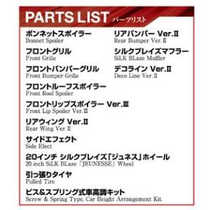 1/24 シルクブレイズ TRH200Vハイエース VerIII '10(トヨタ) ザ・チューンドカー No.28 #プラモデル|aoshima-bk|04