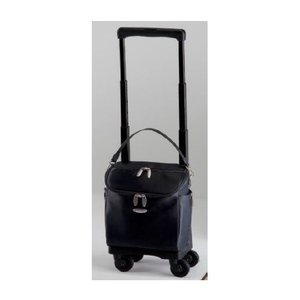 SWANY スワニーバッグ(キャリーバッグ・ショッピングカート) D-291 ジップIV TS15(A5収納サイズ)|aozora-d