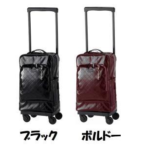 SWANY スワニーバッグ(キャリーバッグ・ショッピングカート) D-420 エマイロIV(ストッパー付き)L21(B4収納サイズ)|aozora-d