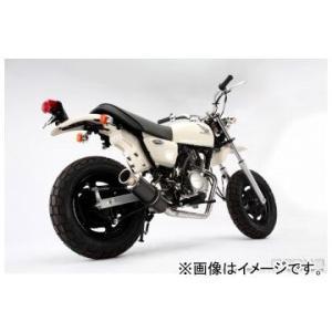 2輪 ビームス SS300カーボン ダウンタイプ B107-08-000 JAN:458228532...
