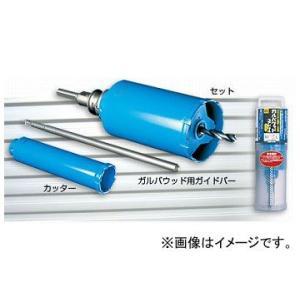 ミヤナガ/MIYANAGA ガルバウッドコアドリル SDSプラスシャンクセット PCGW55R|apagency|01