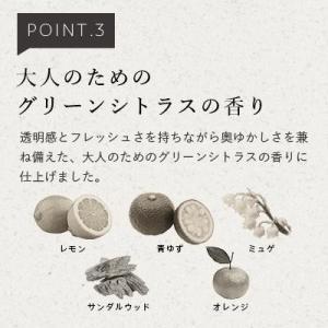 N organic マイルド&リファイニング シャンプー エヌ オーガニック apishmono 06