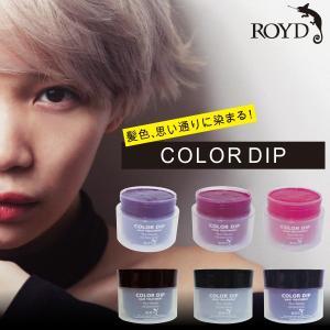 ロイド カラー ディップ ROYD COLOR DIP  トリートメント|apishmono