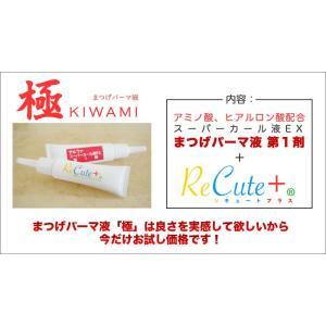 付けまつげ用パーマ液 極 KIWAMI aplusv 02