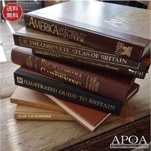 古書 古い本 洋書 1冊 Lサイズ イギリスアンティーク 骨董 世界