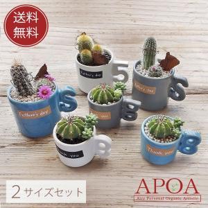 サボテン 多肉植物 寄せ植え マグカップ 鉢入り 選べる大小2個セット おしゃれ プレゼント ギフト|apoa