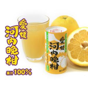 愛工房 河内晩柑ストレートジュース 果汁100% 125ml×30本セット ケース販売 apotheke