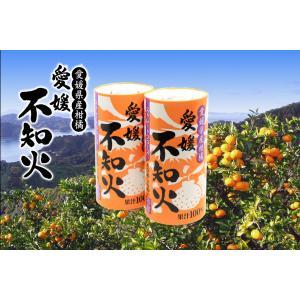 愛工房 愛媛不知火ストレートジュース 果汁100% 125ml×30本セット ケース販売 apotheke