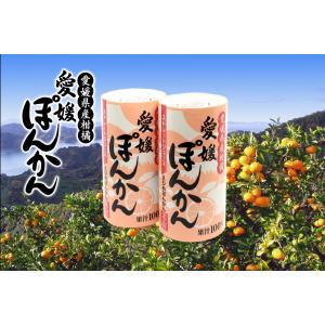 愛工房 愛媛ぽんかんストレートジュース 果汁100% 125ml×30本セット ケース販売 apotheke