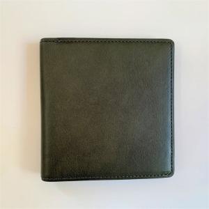 カードがたくさん入るのに薄い手の平財布 BS02 グリーン|appbankstore